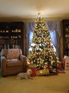 Christmas 2013 Lily and tree