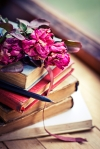 Dry rose on an old book/ Vintage Books and Roses